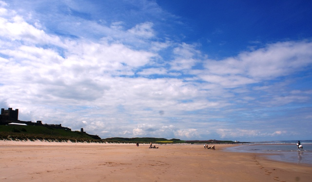 Bamburgh Castle and beach Northumberland - by Zoe Dawes