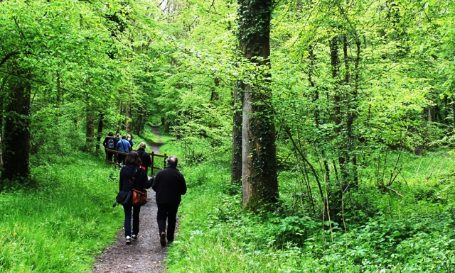 Bois L'Eveque - forest walk in Wilfred Owen's footsteps to Ors, France -  photo Zoe Dawes