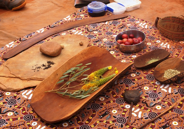Foraging for bush food the aborigine way for Aboriginal cuisine