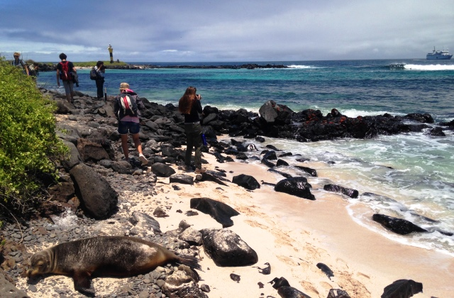 On Espanola in the Galapagos Islands - image Zoe Dawes