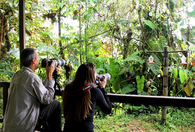 Julie and Tom taking photos of hummingbirds Mashpi Ecuador - image Zoe Dawes