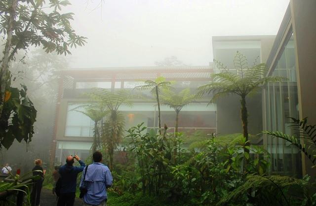 Mashpi Lodge Ecuador cloudforest - image Zoe Dawes