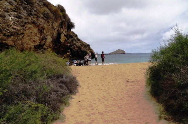 Punta Pitt beach San Cristobal, Galapagos Islands - image Zoe Dawes