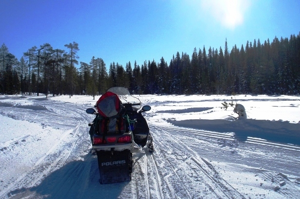 Snowmobile in Finland - Quirky Traveller