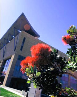 Te Papa Museum, Wellington, New Zealand