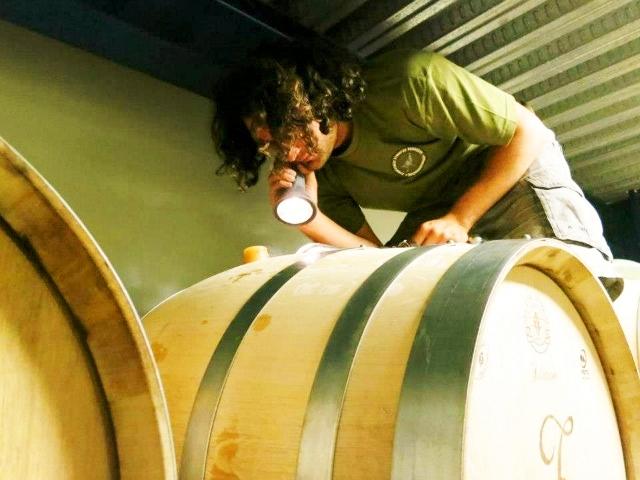 Zambartas  Checking the wine