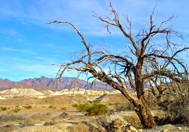 Death Valley National Park, Cailifornia, USA