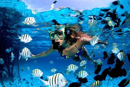 Underwater Diving - by dMap Travel Guide