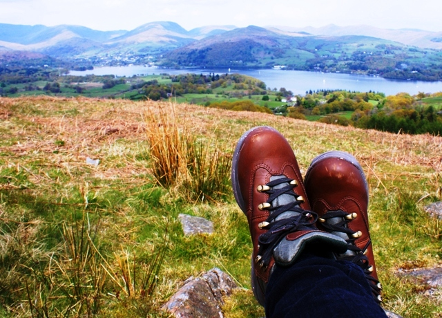 Latterbarrow overlooking Windermere Lake District, Cumbria