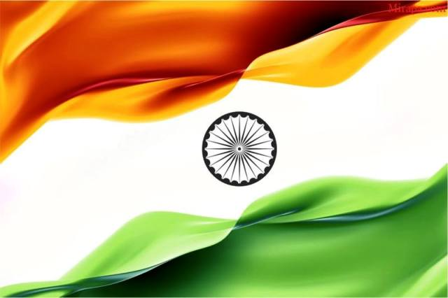 celebrating s independence day photo essay  flag image