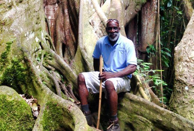 O'Neil in St Kitts rainforest