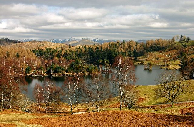 Tarn Hows in winter - image Mjobling