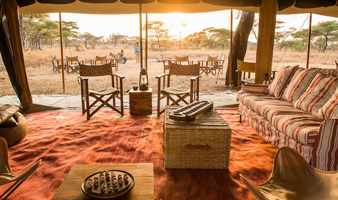 , Tanzani, Africa- with Luxury Safari Company